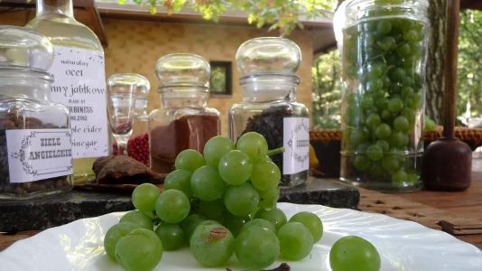 jak zrobić ocet z winogron przepis wykonanie octu winnego winogronowego