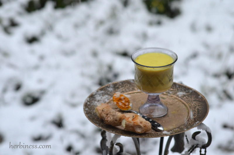złote mleko herbiness1