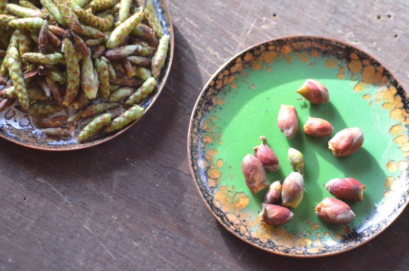 pączki w winie zielony talerzyk
