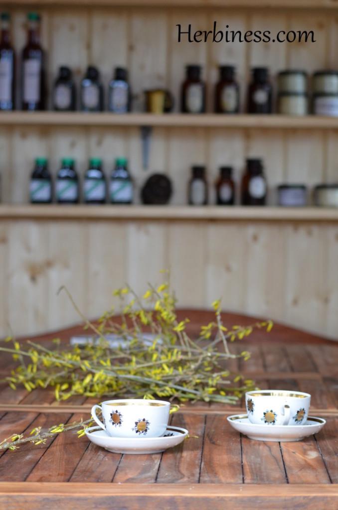 herbatka dnia filiżanku(3)