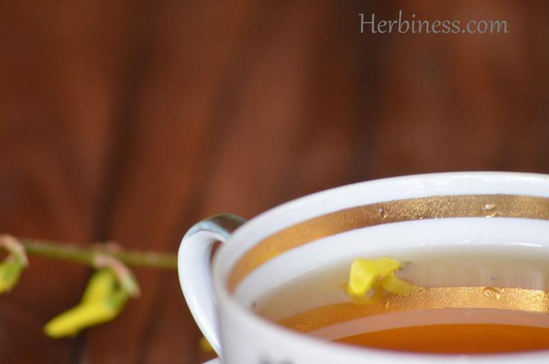 herbatka dnia kolor(4)