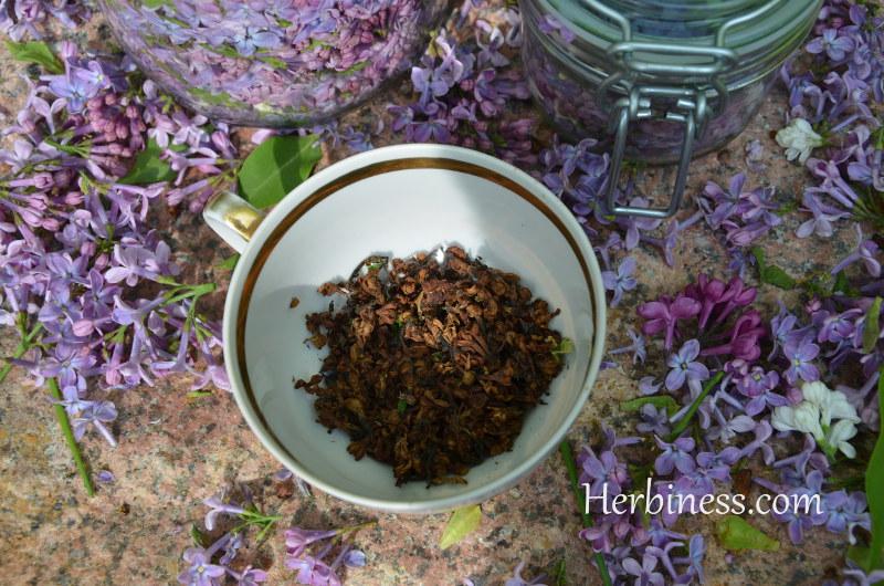 herbatka z kwiatka susz w filiżance(6)